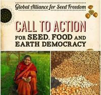 Alleanza-globale-per-i-semi-siamo-tutti-chiamati-in-campo_medium